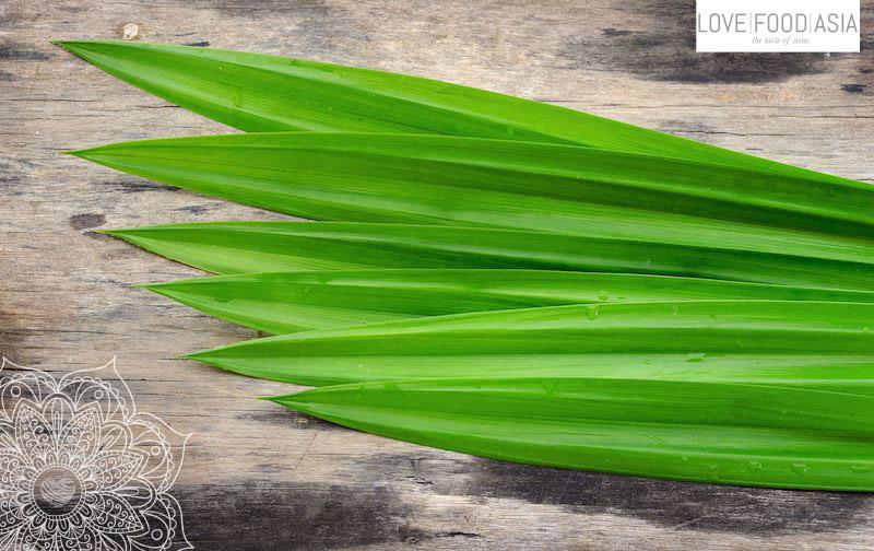 Pandan Blätter
